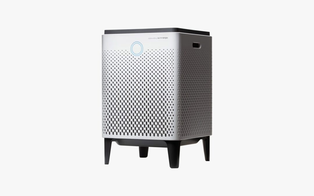 Our Favorite Air Purifier for Large Rooms Is Almost Half Off